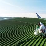 corcho proyectado para impermeabilizar cubiertas (10)